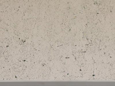 Bianco Concrete