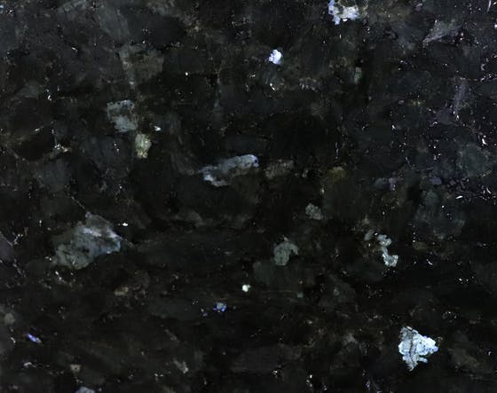 Emerald Pearl (Labrador)